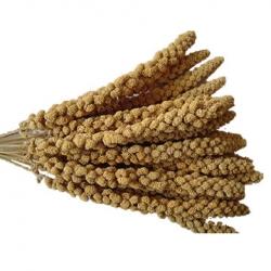 Topflite Millet Spray 1kg